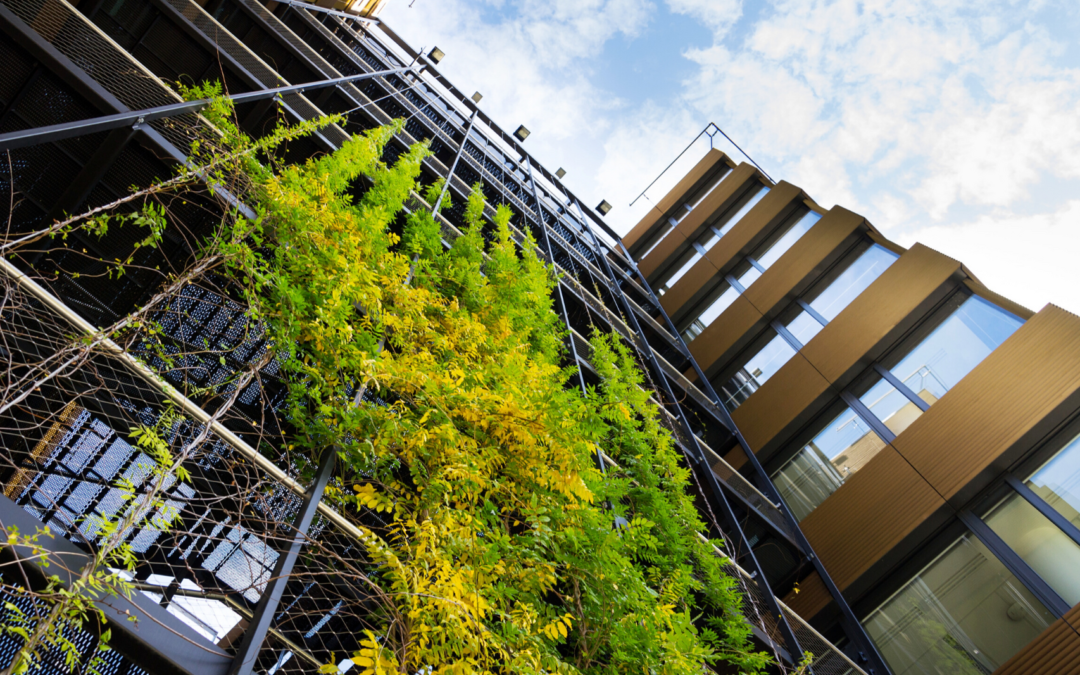 Sustainable Construction Practices Green Building